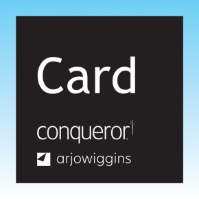 Conqueror Compliment DL CARDS