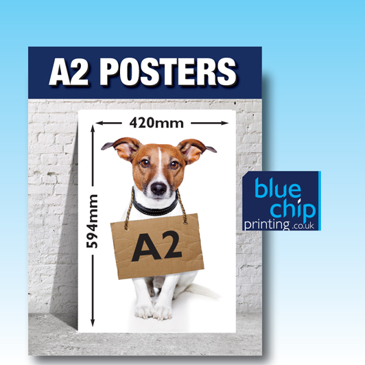 A2 Printed Posters | Size 594mm x 420mm