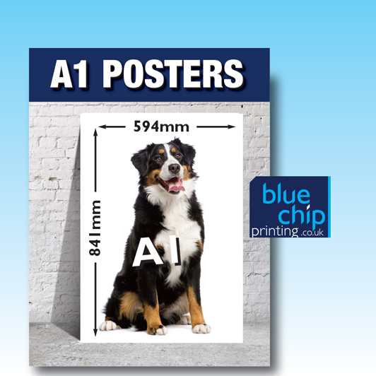 A1 Printed Posters | Size 841mm x 594mm