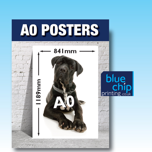 A0 Printed Posters | Size 1189mm x 841mm